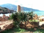 sites-historiques-tipaza-algerie-1202169917-1272036.jpg