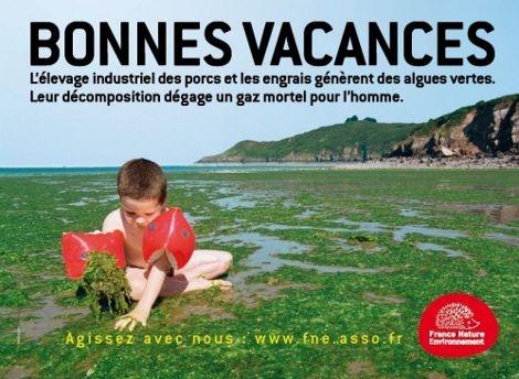 1602_Algues_vertes_France_Nature_Environnement.jpg